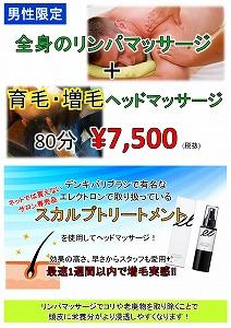 愛知 豊橋 男性 リンパマッサージ 育毛 増毛.jpg