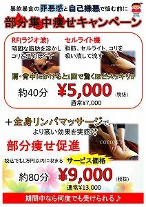 愛知 豊橋 ダイエット 分部痩せ 脂肪 セルライト.jpg