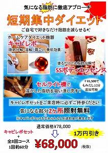 R1年8月短期集中ダイエット(キャビレボ).jpg